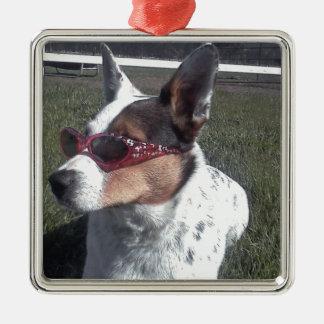 Luna dice el perro fresco en gafas de sol adorno cuadrado plateado