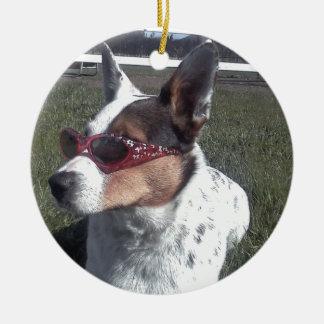 Luna dice el perro fresco en gafas de sol adorno redondo de cerámica