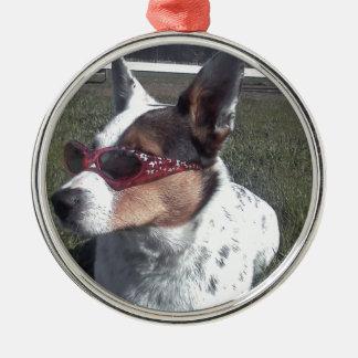 Luna dice el perro fresco en gafas de sol adorno redondo plateado