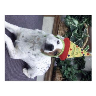 """Luna dice """"feliz cumpleaños """" postal"""