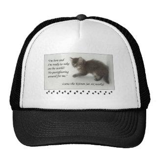 ¡Luna el gatito no hace Pussyfoot alrededor! Gorras De Camionero