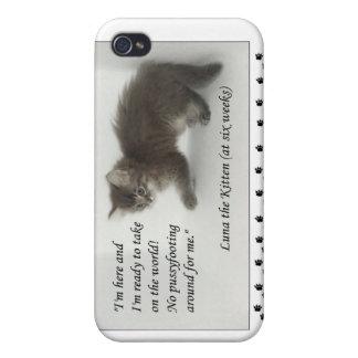¡Luna el gatito no hace Pussyfoot alrededor iPhone 4 Fundas