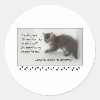 ¡Luna el gatito no hace Pussyfoot alrededor! Pegatina Redonda