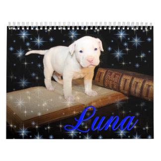 Luna el perro de perrito abandonado ahorrado calendario
