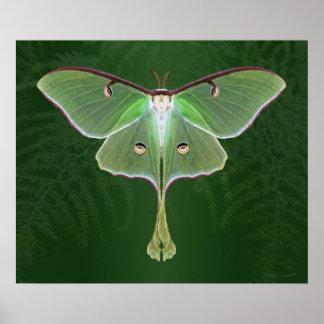 Luna Emerald Art Print