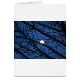 Luna en un árbol tarjeta de felicitación