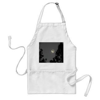 Luna fantasmal delantal