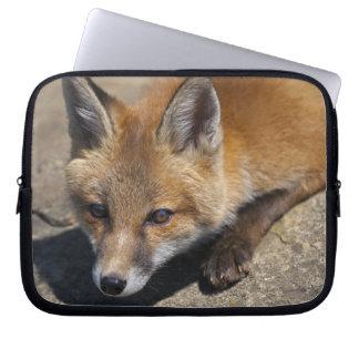 Luna Fox Laptop Sleeve