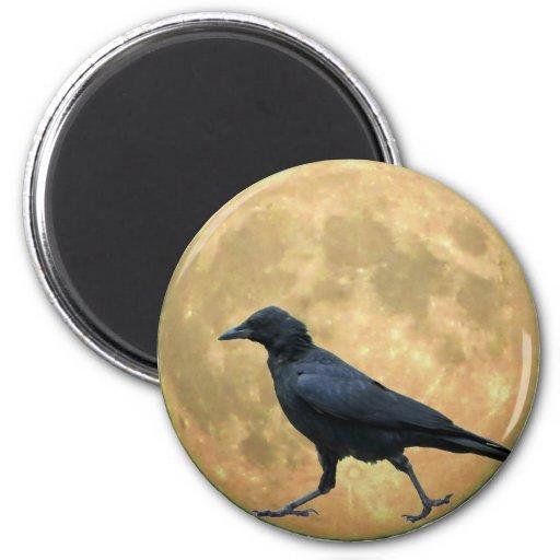 Luna Llena, cuervo que camina Imán Redondo 5 Cm