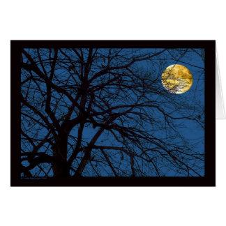 Luna Llena de las ramas de árbol Tarjeta De Felicitación