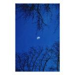 Luna Llena del invierno con los árboles Papeleria De Diseño