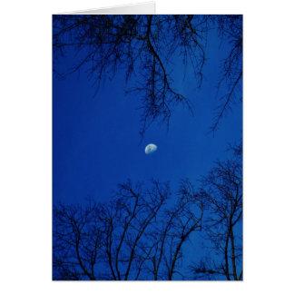 Luna Llena del invierno con los árboles Tarjetas