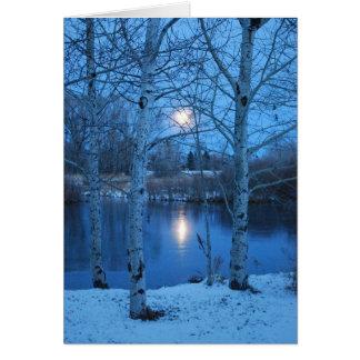 Luna Llena del invierno en la charca Tarjeta De Felicitación