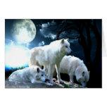 Luna llena del lobo tarjeton