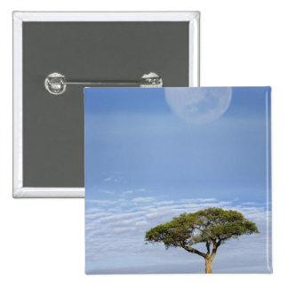 Luna Llena sobre los árboles del acacia, Masai Mar Pin Cuadrado