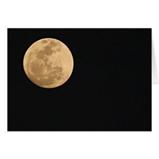 Luna Llena Tarjetón