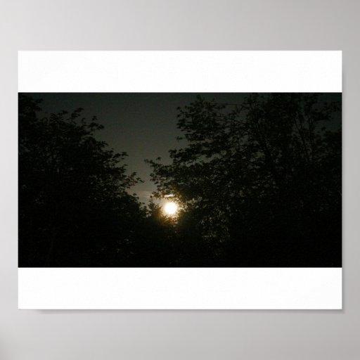 Luna Llena y árboles Posters