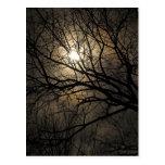 Luna mística tarjeta postal