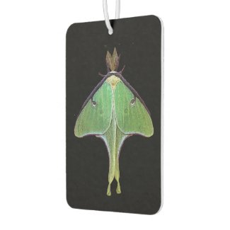 Luna Moth Air Freshener
