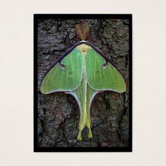 Luna Moth ATC Business Card