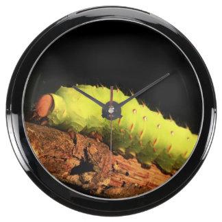 Luna Moth Caterpillar Aquavista Clock