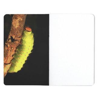 Luna Moth Caterpillar Journal