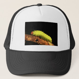Luna Moth Caterpillar Trucker Hat