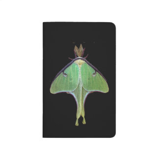 Luna Moth Journal