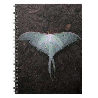 luna moth nature butterfly fairy fantasy dream spiral notebook