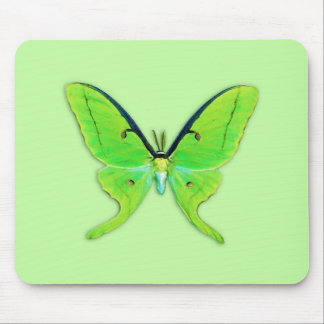 Luna moth on a pale green background mouse pad