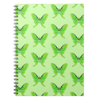Luna moth on a pale green background notebook