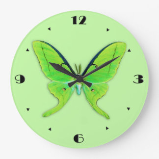 Luna moth on a pale green background wall clock
