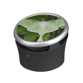Luna Moth on Carnaby Clematis Bluetooth Speaker