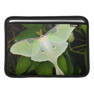 Luna Moth on Carnaby Clematis MacBook Sleeve