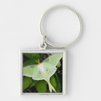 Luna Moth on Carnaby Clematis Silver-Colored Square Keychain