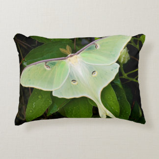 Luna Moth on Carnaby Clematis Accent Pillow