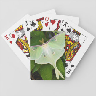 Luna Moth on Carnaby Clematis Playing Cards