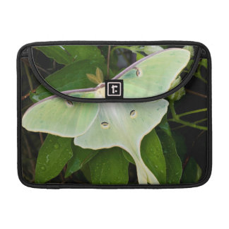 Luna Moth on Carnaby Clematis Sleeve For MacBook Pro