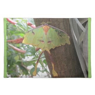 Luna Moth Placemat