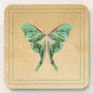 Luna Moth Square Cork Coasters