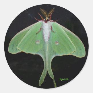 Luna Moth  Sticker Round Sticker