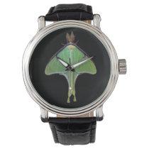 Luna Moth Watch