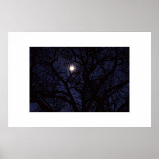 luna póster