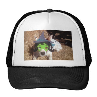 Luna says, dog, dogs, funny, witch, Halloween Trucker Hat