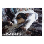 Luna Says Get Well Soon Take Naps Greeting Card