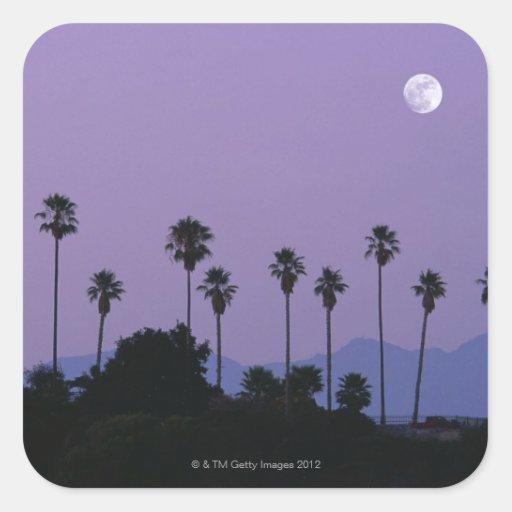 Luna sobre las palmeras en la oscuridad, Hollywood Calcomanía Cuadrada Personalizada