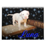 Luna the Saved Abandoned Puppy Dog Wall Calendars