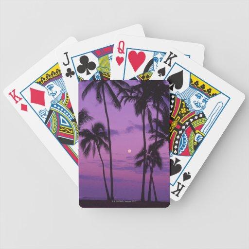 Luna y palmera baraja cartas de poker
