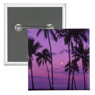 Luna y palmera pins