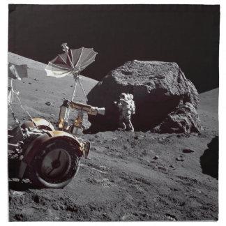 Lunar Boulder Printed Napkins